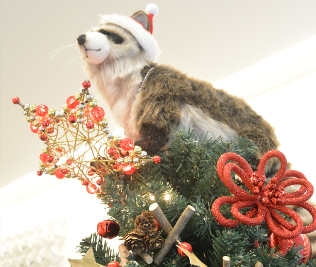 DL-D14-blog-holidaydecorations-gardinerfhill