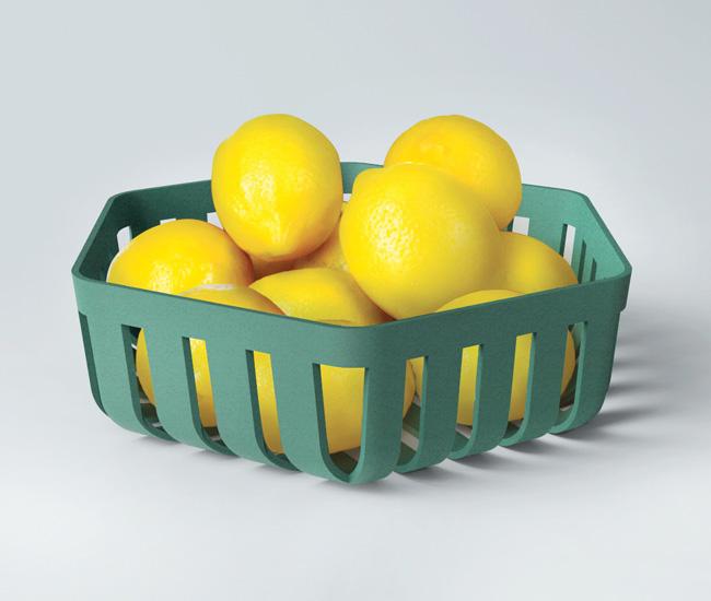 dl-1216-giftguide-plastic-fruit