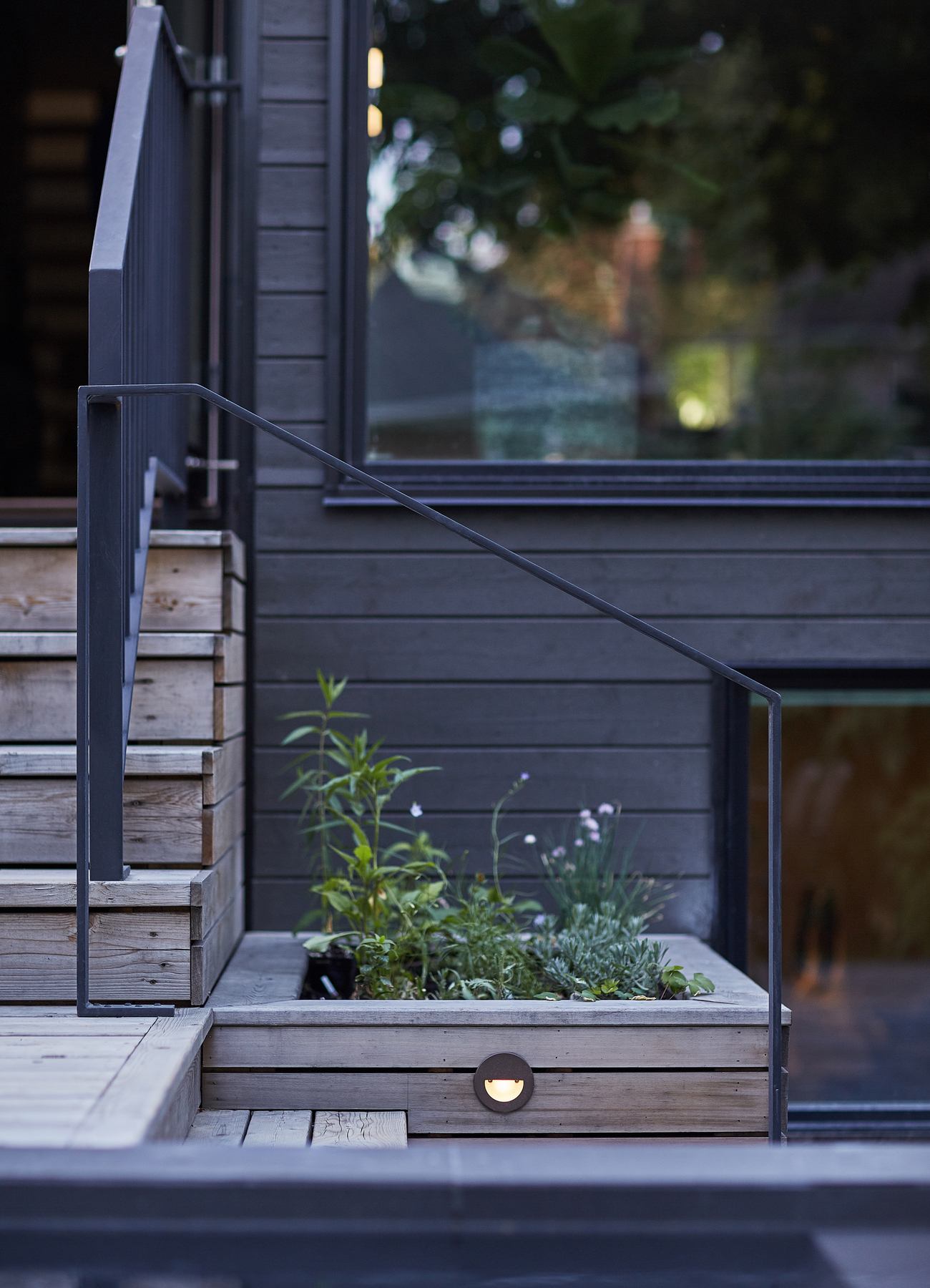 The back yard in House of Louis, a North Toronto renovation by Asquith Architects